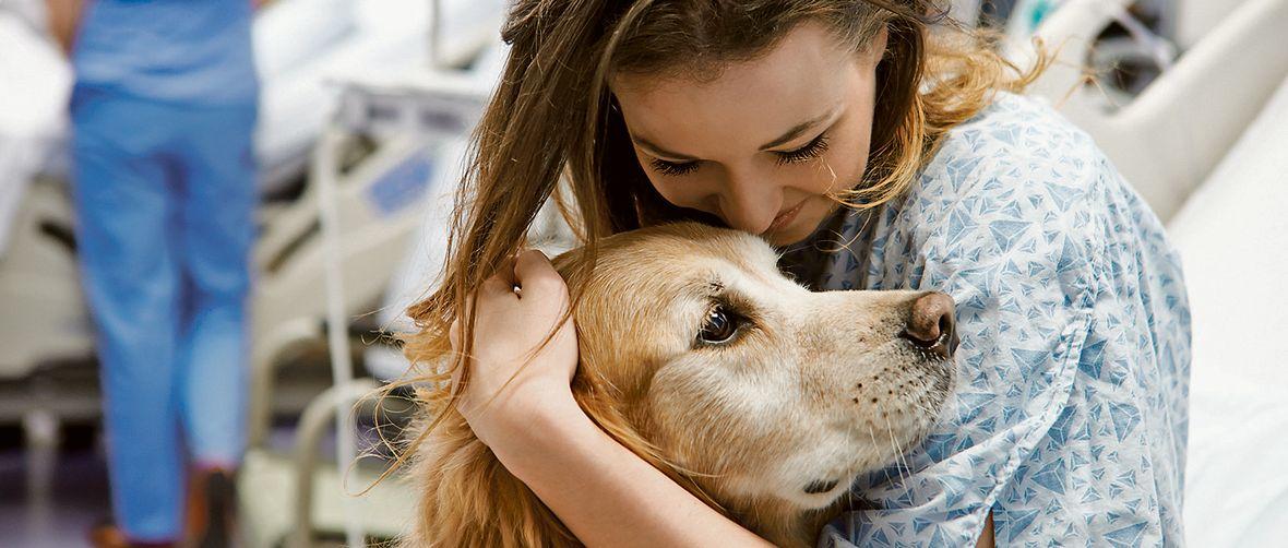 pas psi ljubimci
