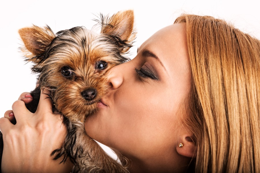 poljubac-pas