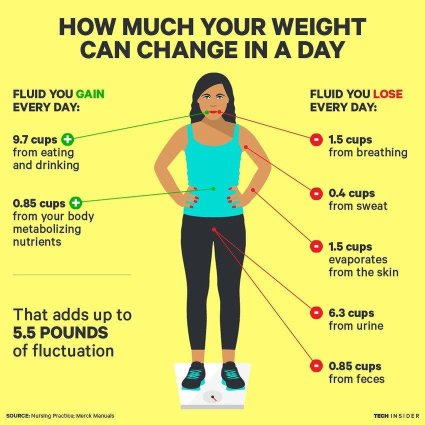 dnevna-varijacija-tjelesne-težine