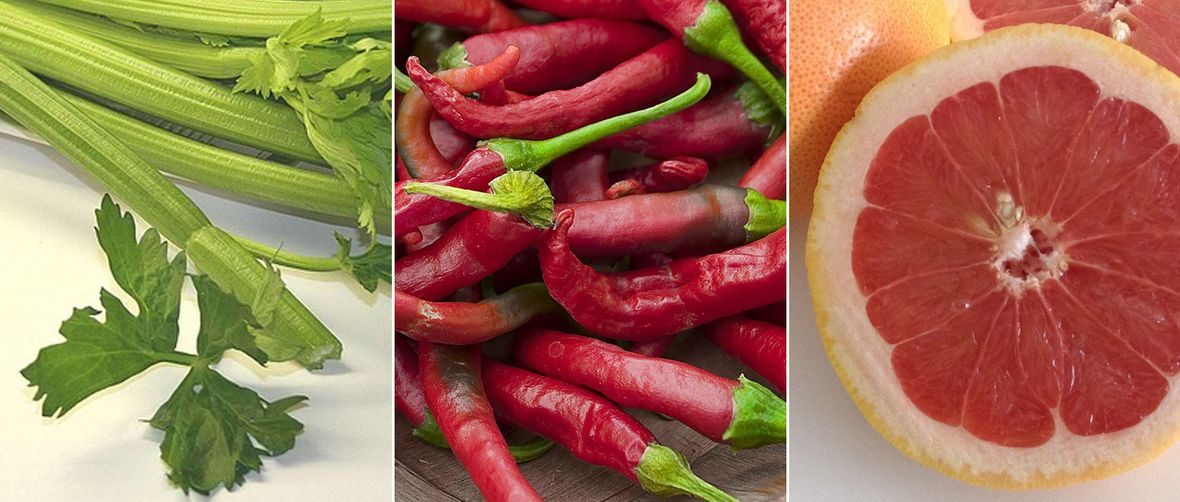 hrana za metabolizam