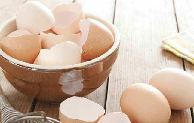 ljuska od jajeta kao lijek
