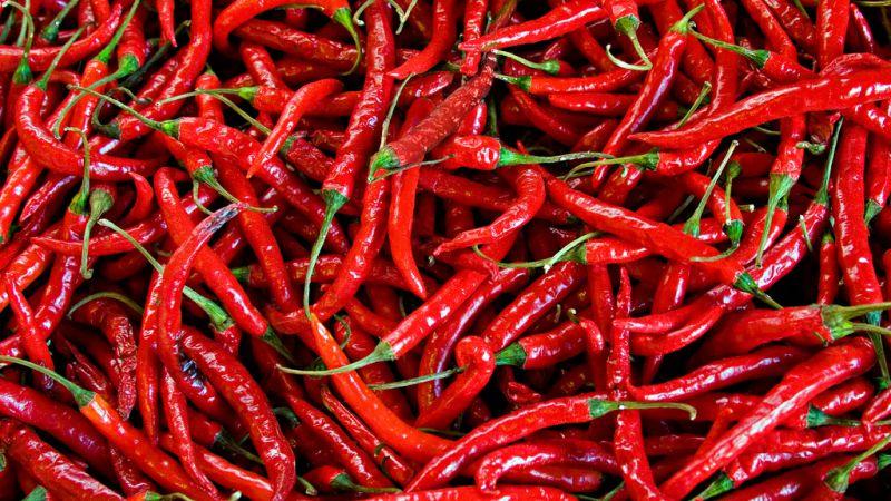 ljuta paprika