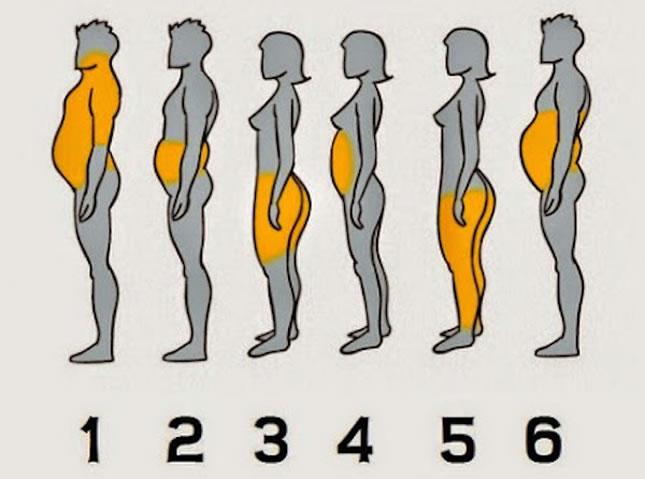 na kojem dijelu tijela ste najdeblji