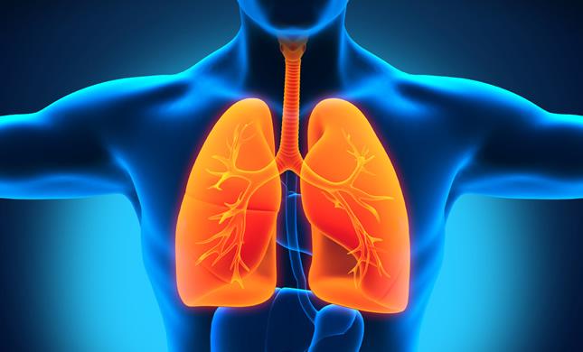 čista pluća