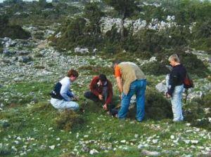 sakupljanje ljekovitog bilja