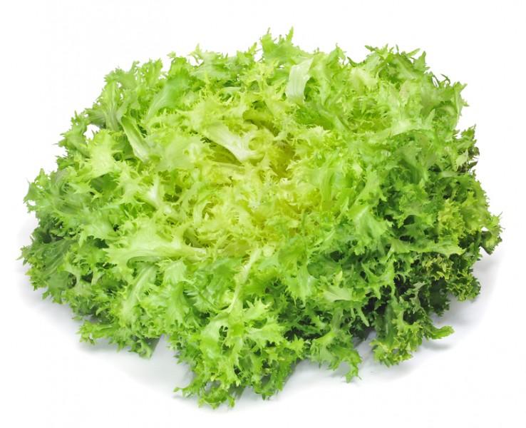 zelena salata slika